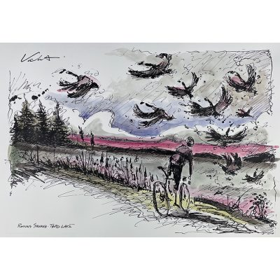 Rollins Savana | Original Cycling Art